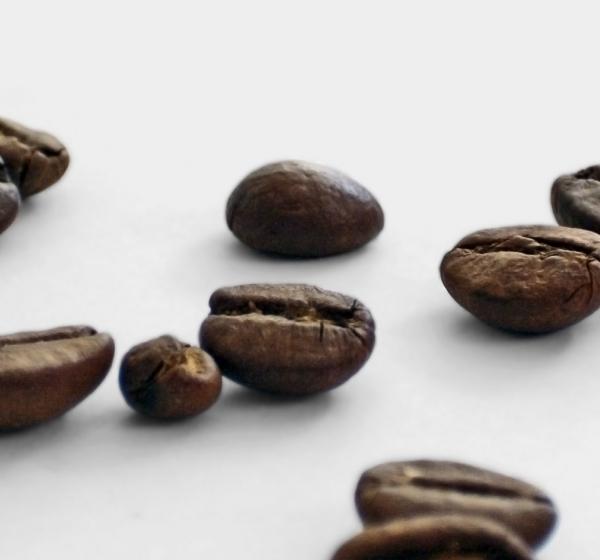 <brand>Insomnia<br></brand>Markenkonzept Coffeeshop